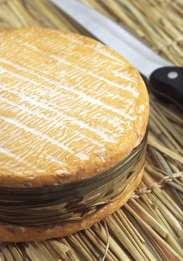 Livarot, French Cheese Made In Normandy From Cow'S Milk : Stock Photo