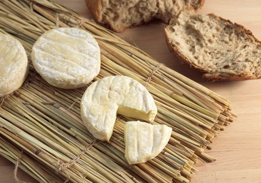 Saint Marcellin, A French Cheese Made From Cow'S Milk : Stock Photo