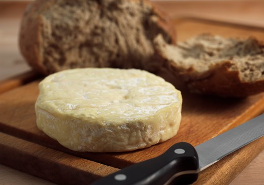 Stock Photo: 4273-6036 Bread With French Cheese Called Saint Marcellin Produced From Cow'S Milk