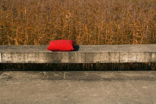 Red pillow set on concrete ledge, grassy field in background : Stock Photo