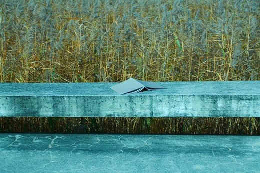 Open book placed face down on concrete ledge, grassy field in background : Stock Photo