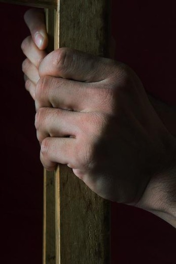 Hands holding piece of wood : Stock Photo