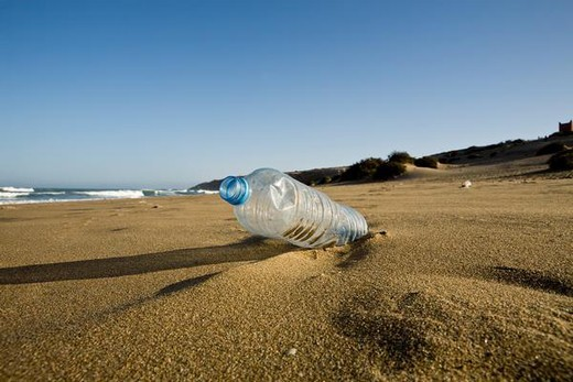 Plastic water bottle abandoned on beach, Souss-Massa National Park, Morocco : Stock Photo