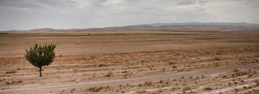 Stock Photo: 4276-5302 Uzbekistan, portion of the Silk Road