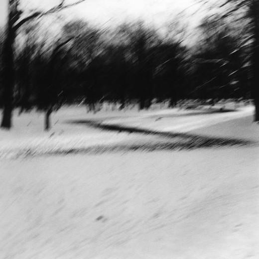 Snowy yard, b&w : Stock Photo