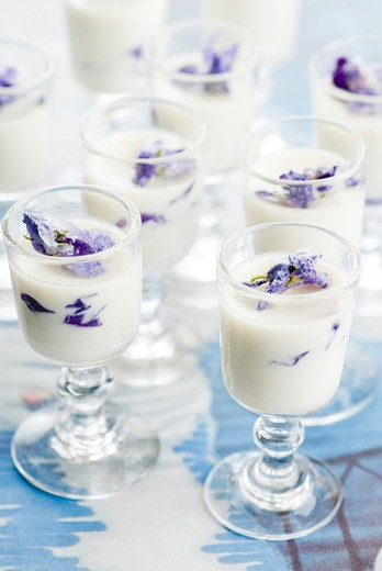 Stock Photo: 4277-1579 Violet pannacotta
