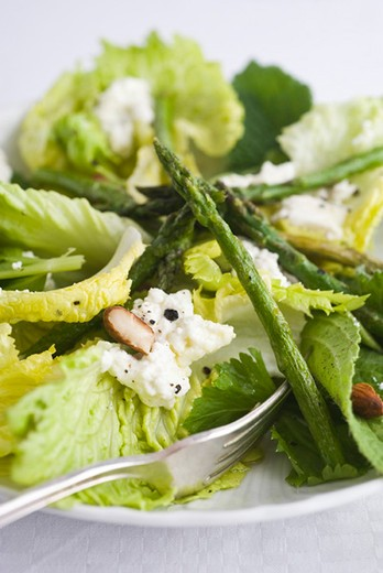 Stock Photo: 4277-1700 Salad with asparagus and ricotta