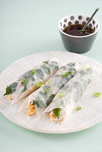 Stock Photo: 4277-2030 Spring rolls with herbs