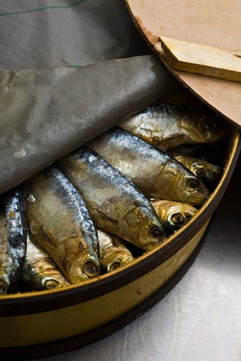 Stock Photo: 4277-2077 Fresh raw sardines in barrel