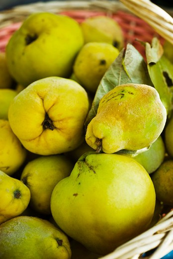 Fresh quinces : Stock Photo