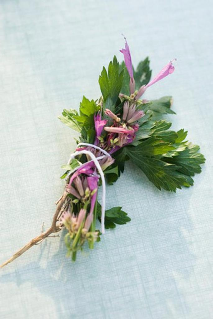 Bouquet garni : Stock Photo
