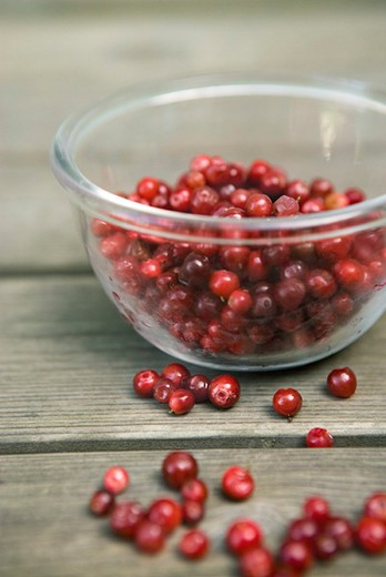Stock Photo: 4277-2818 Lingonberries