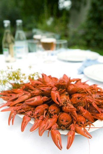 Stock Photo: 4277-2830 Boiled crawfish on outdoor dinner table
