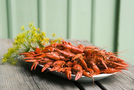 Boiled crawfish garnished with fresh dill : Stock Photo