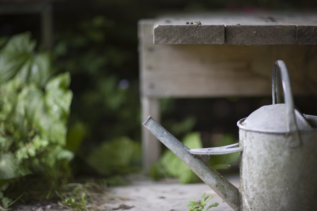 Summer garden and close up of watering can : Stock Photo