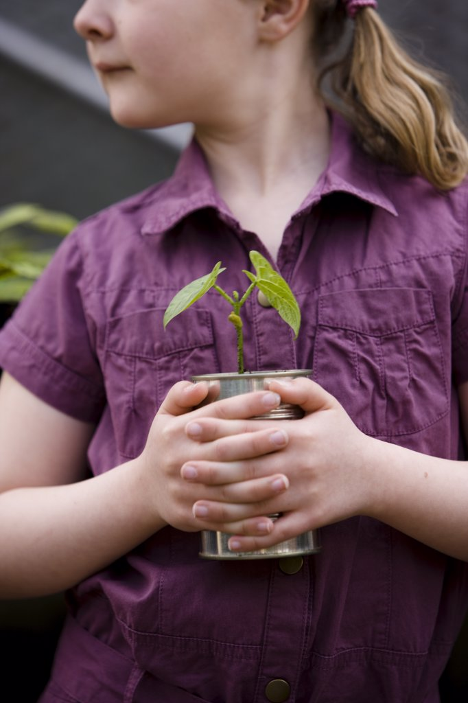Stock Photo: 4278-2921 Close up of girl holding a plant