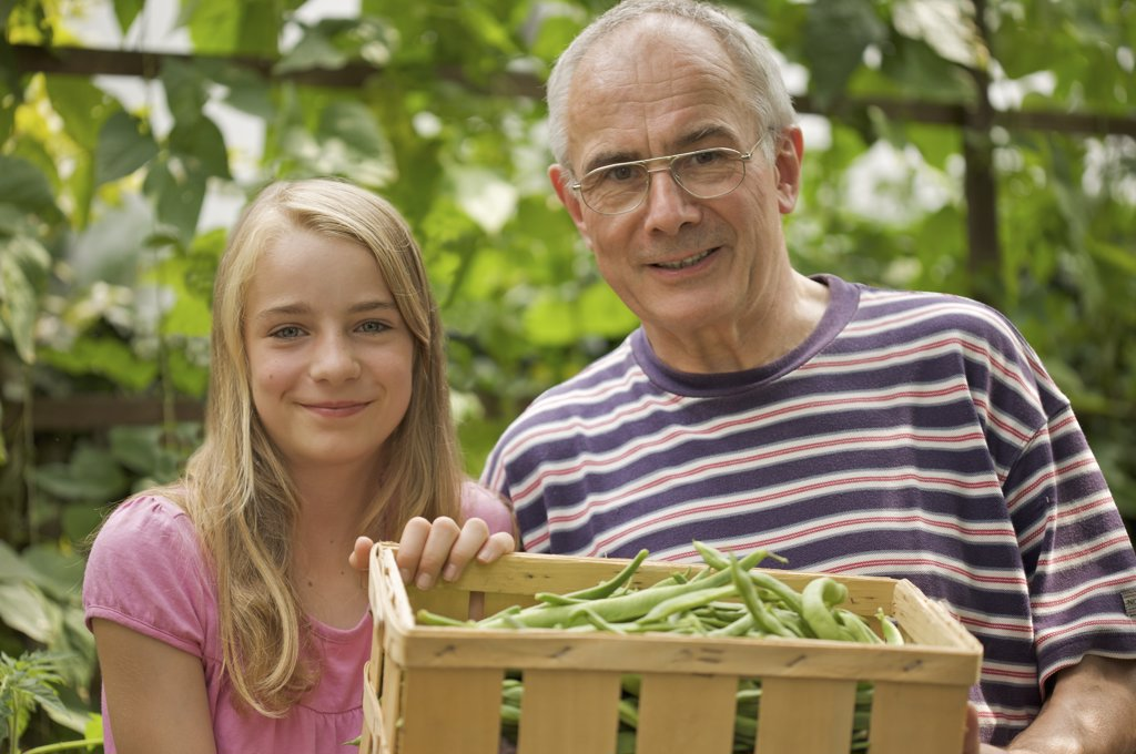 Young girl and mature man holding a crate of broad beans : Stock Photo