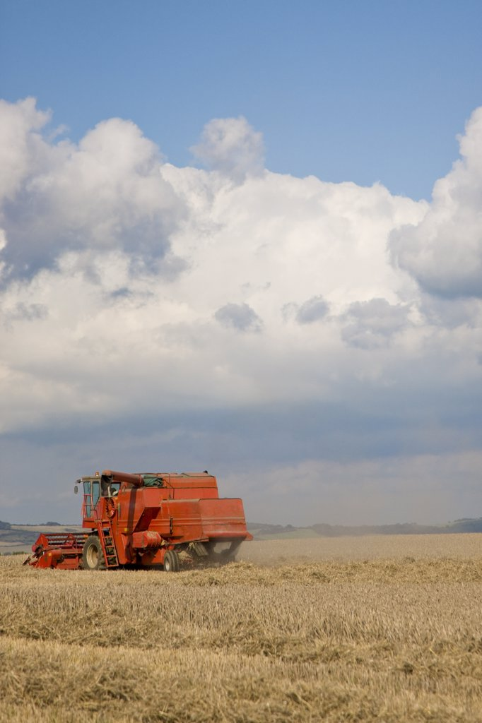 Stock Photo: 4278-4164 Combined harvester in a wheat field