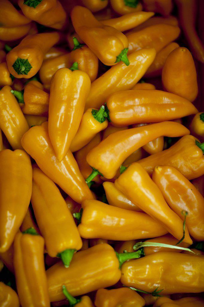Stock Photo: 4278-4183 Orange pointed peppers - Capiscum