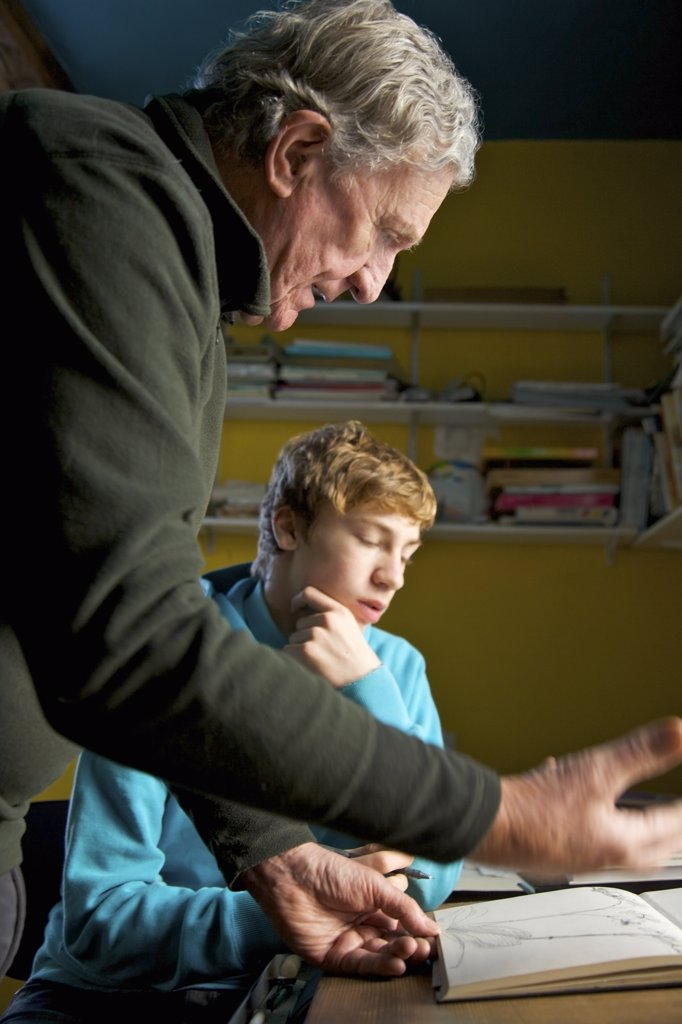 Stock Photo: 4278-6467 Grandfather showing grandson a drawing book