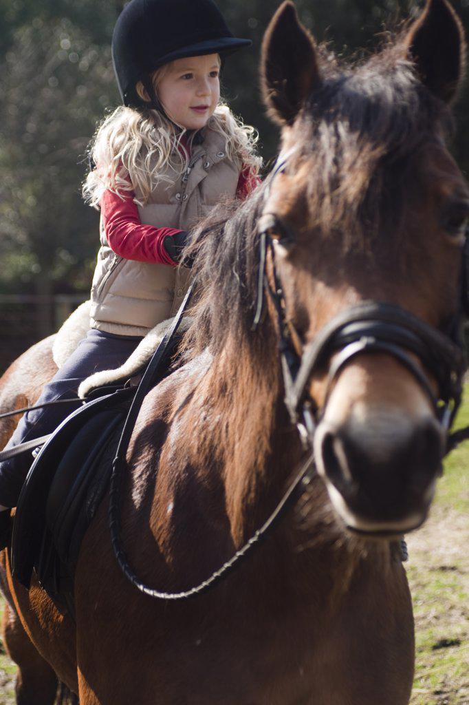 Stock Photo: 4278-6678 Young girl riding a horse
