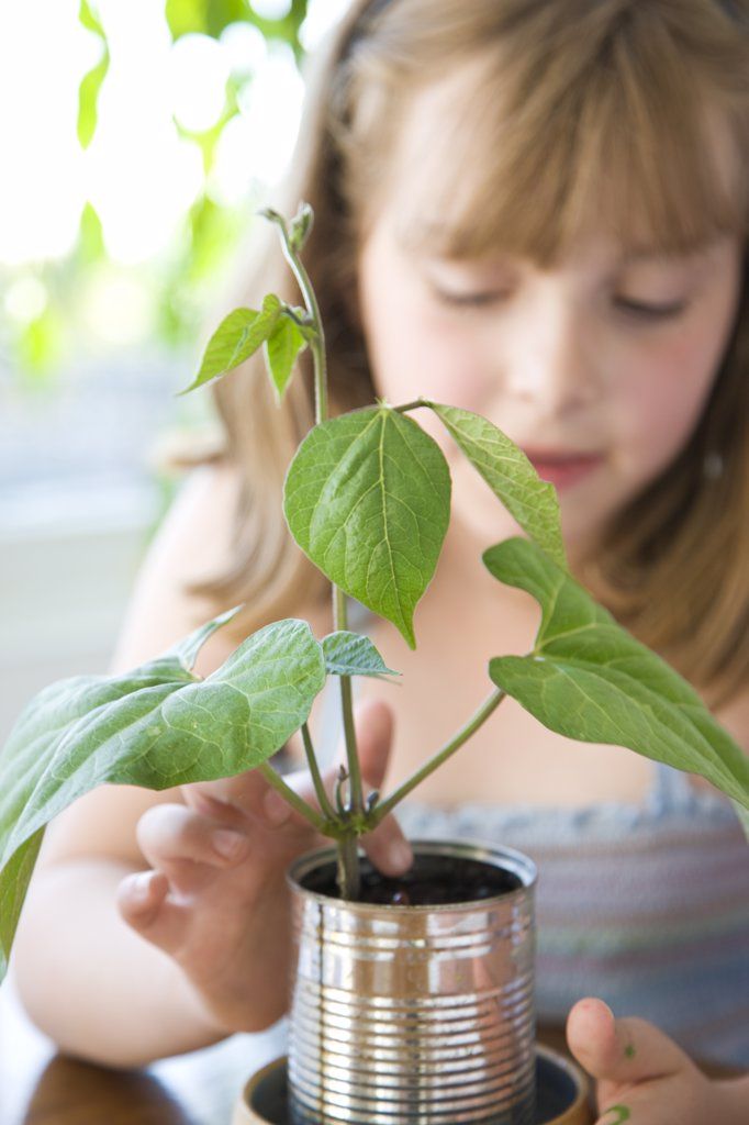 Girl Inspecting Plant : Stock Photo