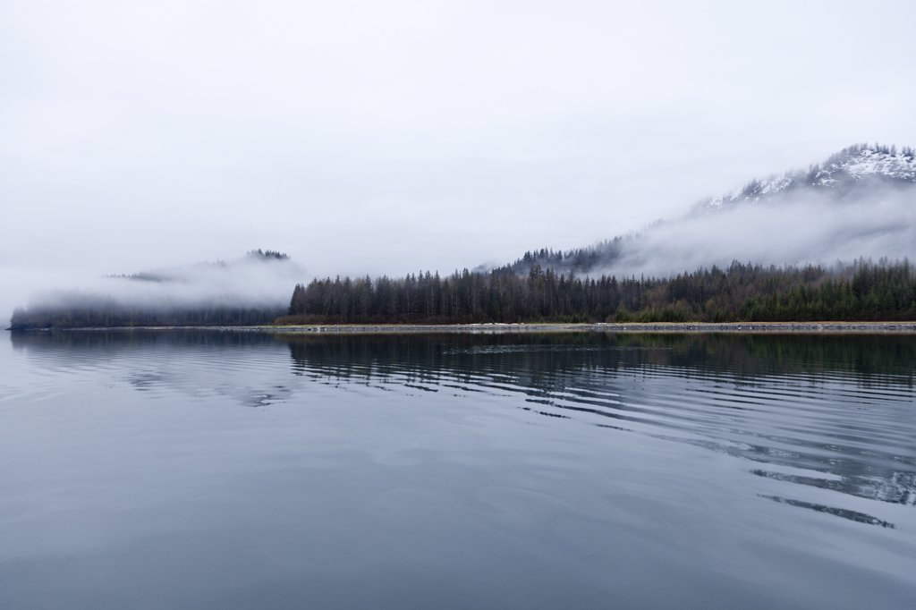 Stock Photo: 4278-9405 Shoreline Shrouded in Fog, Glacier Bay, Alaska, USA