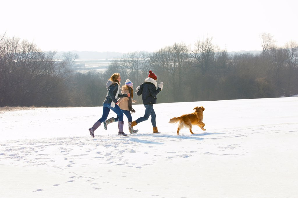 Stock Photo: 4278-9778 Teenage Girls and Dog Running in Snow