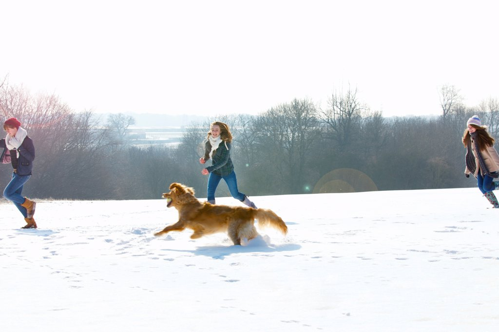 Teenage Girls and Dog Running in Snow : Stock Photo
