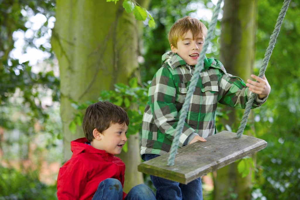 Two Boys Playing on a Swing : Stock Photo