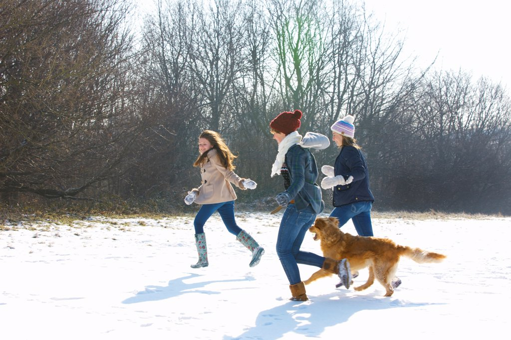 Stock Photo: 4278-9883 Teenage Girls and Dog Running in Snow