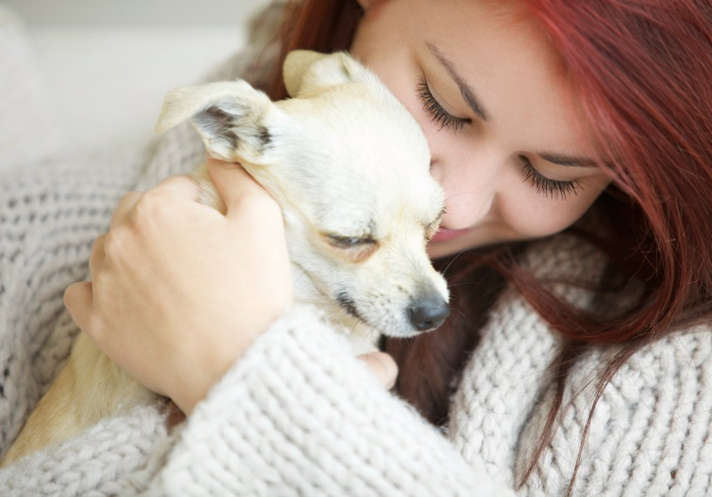 Stock Photo: 4278-9928 Teenage Girl Hugging a Chihuahua Dog