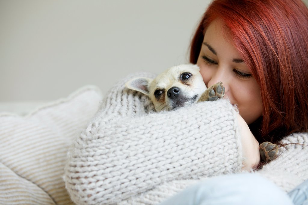 Stock Photo: 4278-9964 Teenage Girl Hugging a Chihuahua Dog