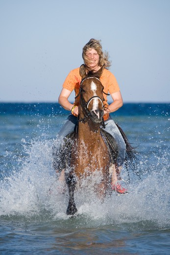 Stock Photo: 4279-29531 rider on Arabian horse  - riding through water