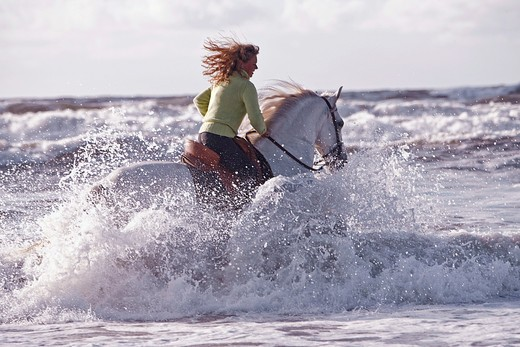 Stock Photo: 4279-29562 woman on Andalusian horse - riding in the sea