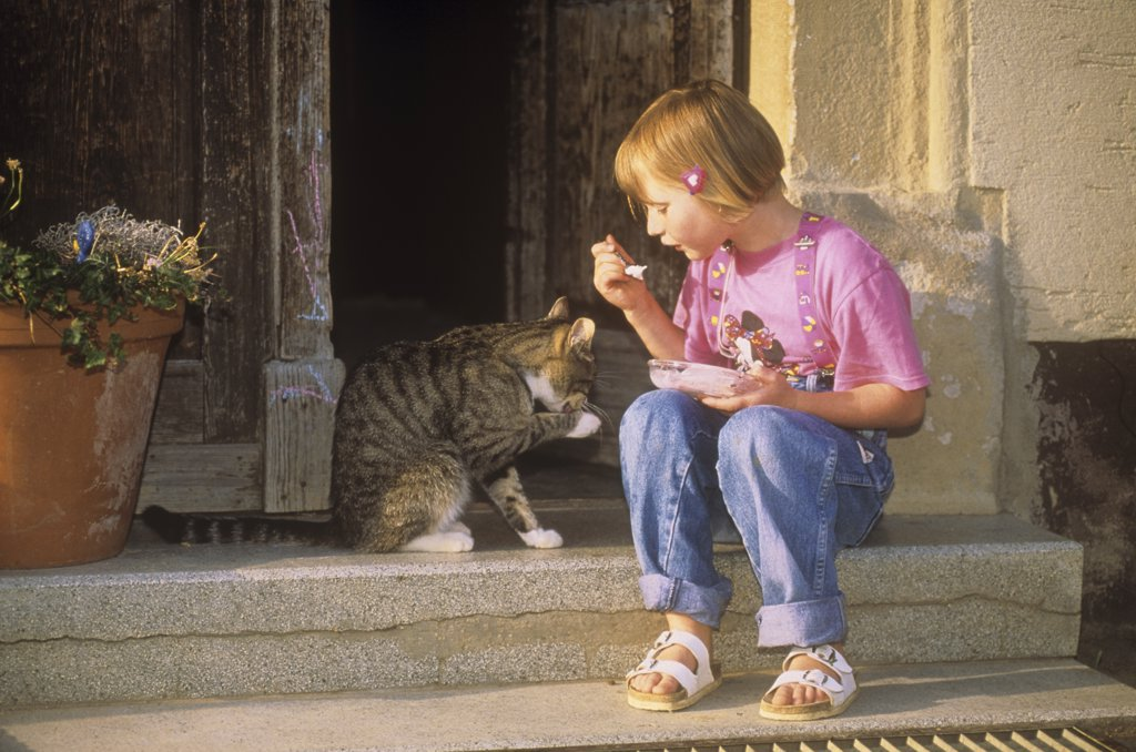 Stock Photo: 4279-42559 girl and domestic cat