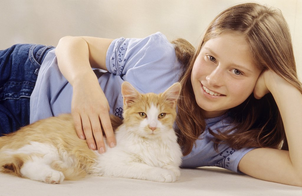Stock Photo: 4279-46052 girl is patting a cat