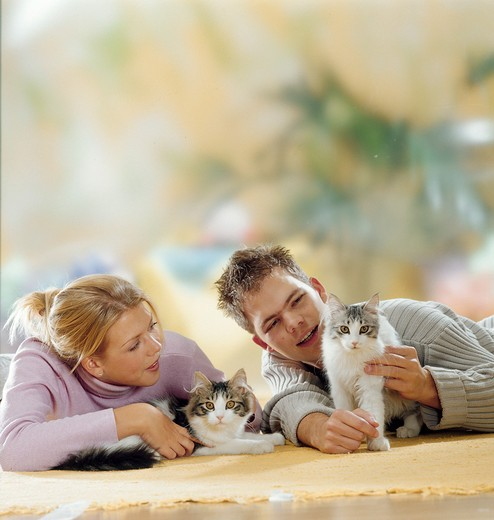 boy and girl with two domestic cats : Stock Photo
