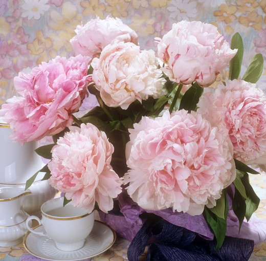bouquet with peonies : Stock Photo