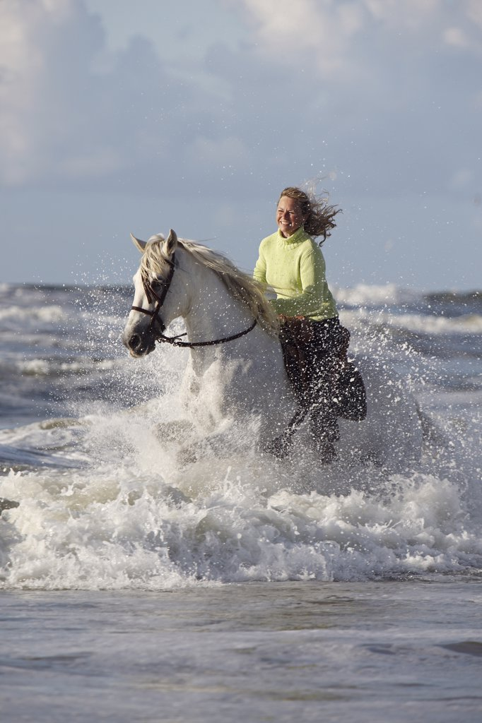 woman riding on Andalusian horse in water : Stock Photo