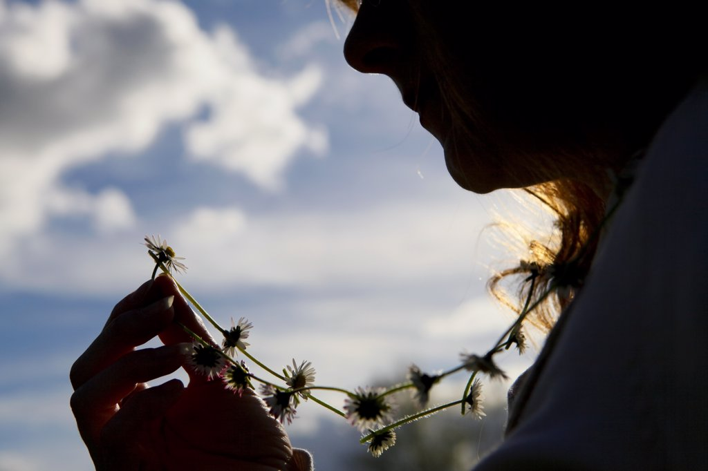England, West Midlands, Birmingham. The silhouette of a woman holding up a daisy from the daisy chain she is wearing around her neck. : Stock Photo