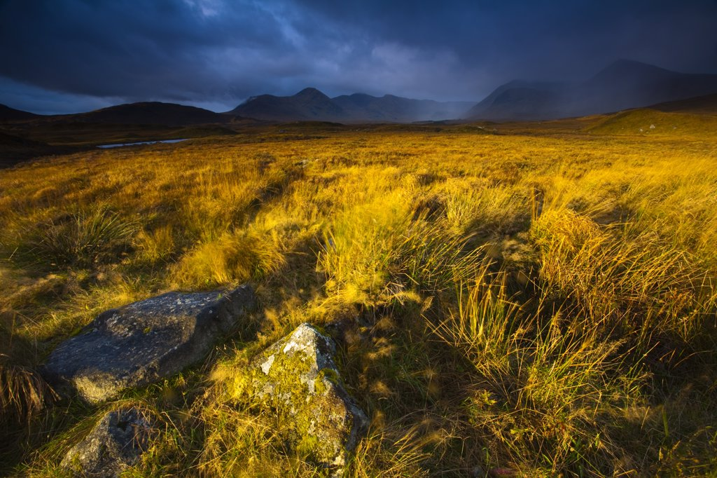 Scotland, Highland, Rannoch Moor. Early morning sun on Rannoch Moor with the dominating peak of the Black Mount in the distance. : Stock Photo