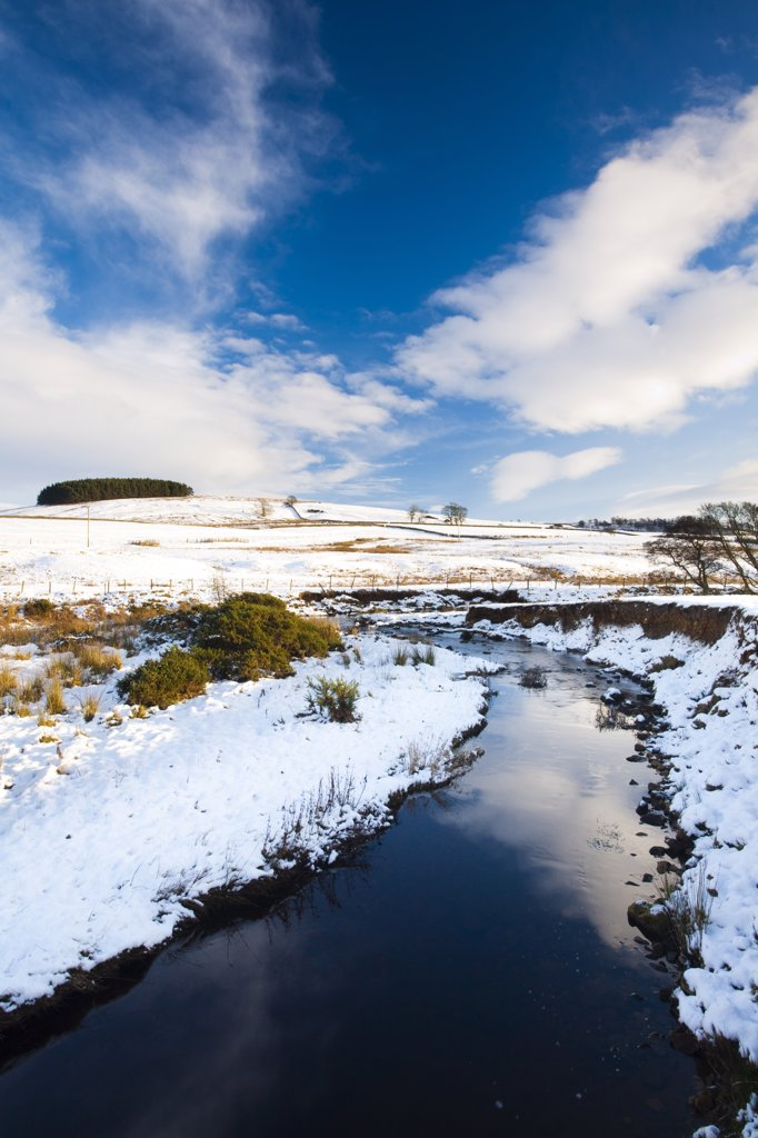 England, Northumberland, near Otterburn. Typical Northumberland scenery near the village of Otterburn, transformed after a winter snowfall. : Stock Photo