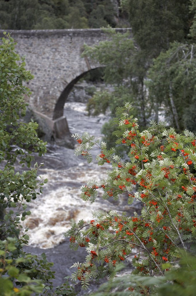 Stock Photo: 4282-13669 Scotland, Moray, Dulcie bridge. Dulcie Bridge over the River Findhorn, built under the direction of Field Marshal George Wade who was responsible for the construction of 40 bridges in Scotland between 1725 and 1737.