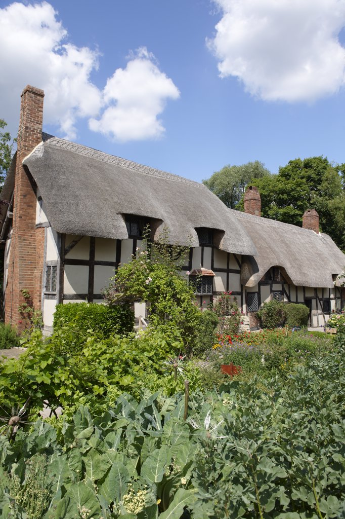 Stock Photo: 4282-1381 England, Warwickshire, Shottery. Anne Hathaway's Cottage, a traditional English cottage that was the premarital home of William Shakespeare's wife, Anne.