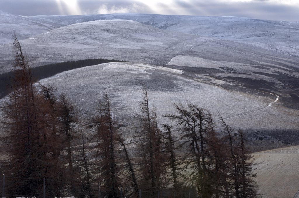 Stock Photo: 4282-13952 Scotland, Aberdeenshire, Cairngorms. Winter frost covering the mountains in the Cairngorms.