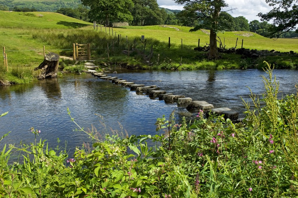 England, Cumbria, near Ambleside. Stepping stones across the River Rothay near Ambleside. : Stock Photo
