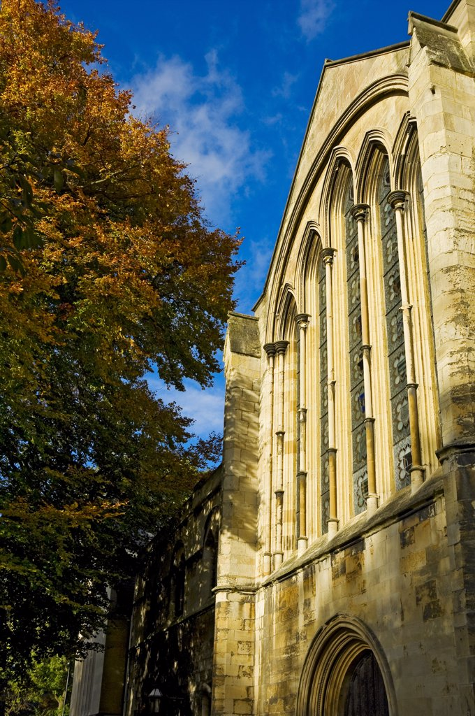 Stock Photo: 4282-15153 England, North Yorkshire, York. York Minster Library in the Old Palace in Dean's Park.