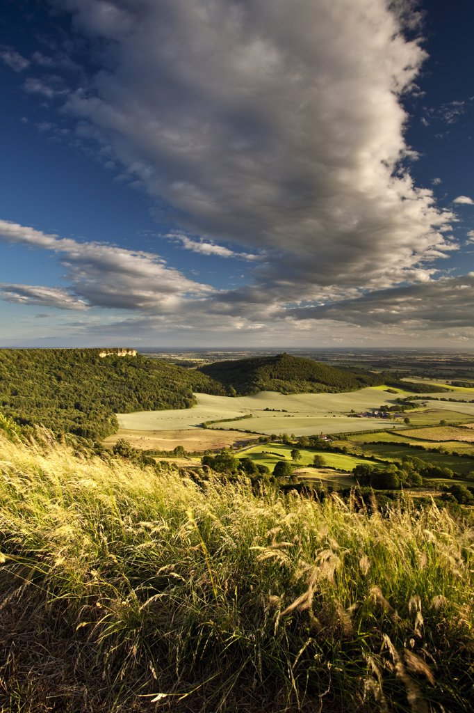 Stock Photo: 4282-17473 England, North Yorkshire, Sutton Bank. Roulston Scar and Hood Hill near Sutton Bank with Vale of York in the distance.