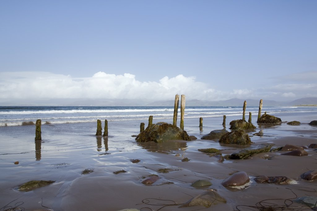 Republic of Ireland, County Kerry, Rossbeigh. Wooden posts and stones on wet sand on an empty beach at Ross Strand, west of Ross Behy on Ring of Kerry. : Stock Photo